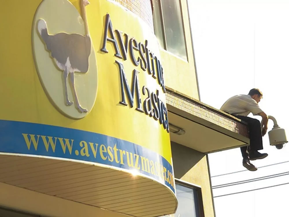 Imagem de Ex-diretores da Avestruz Master são presos por crime contra o sistema financeiro nacional
