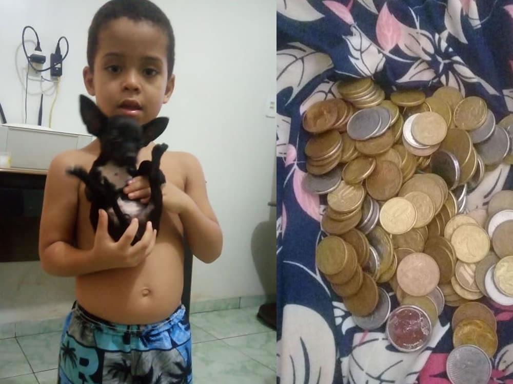 Imagem de Garoto oferece recompensa para quem achar o seu cachorro perdido em Rio Verde e post viraliza